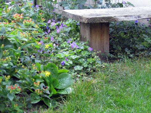 Groene Afscheiding Tuin : In het midden van de tuin een afscheiding images idee n